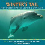 Inspirational Dolphin Story Nintendo Game and Prize Giveaway