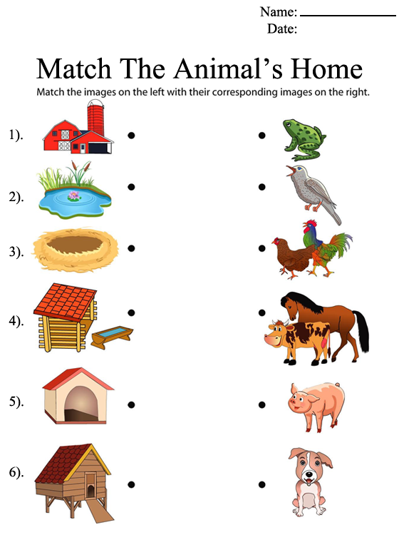 Help Animals Find Their Homes Worksheet